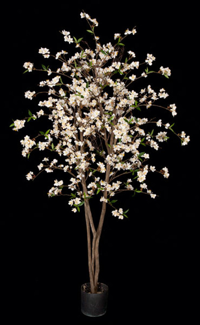 W-150010