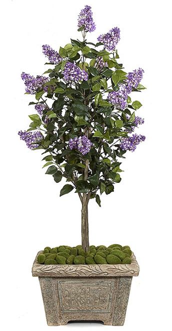W-80220
