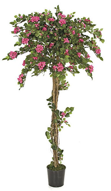 W-926