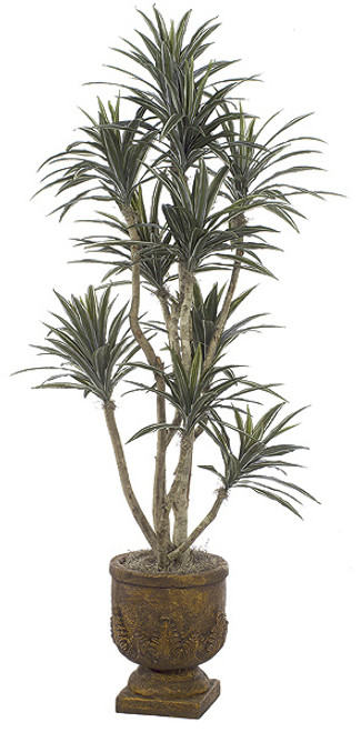 W-60800