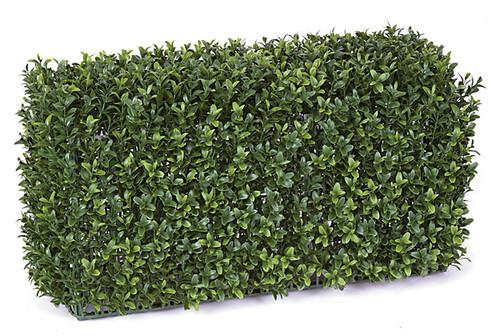"AUV-13300024"" x 11"" x 12"" UV Boxwood Hedge"