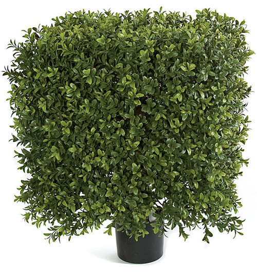AUV-116100
