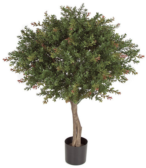 AUV-145220