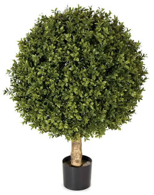 AUV-102610