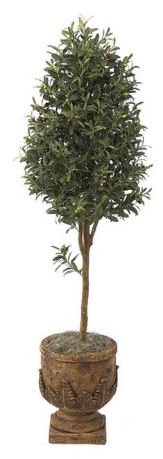 W-29216' Olive TreeDecorative Pot Sold Separately