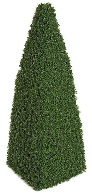 A-809404' Boxwood Cone Topiary
