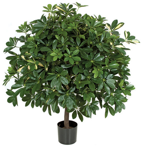 WR-151000