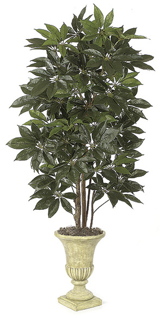W-2400