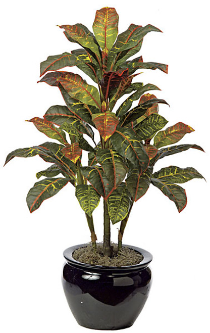 P-61020