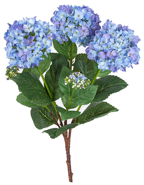P-121025