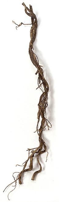A-605815.5' Plastic Twig Vine GarlandBrown