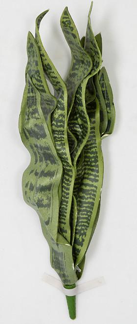 "PF-111006/S 27.5"" Sansevieria Green/Grey Tutone Green"