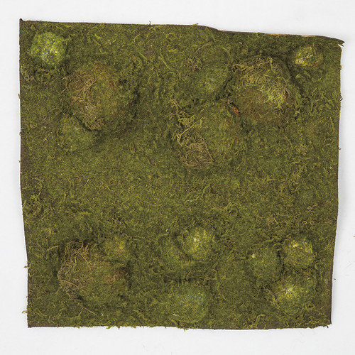 "A-5450/s 13.5"" Moss Mat Brownish Green"