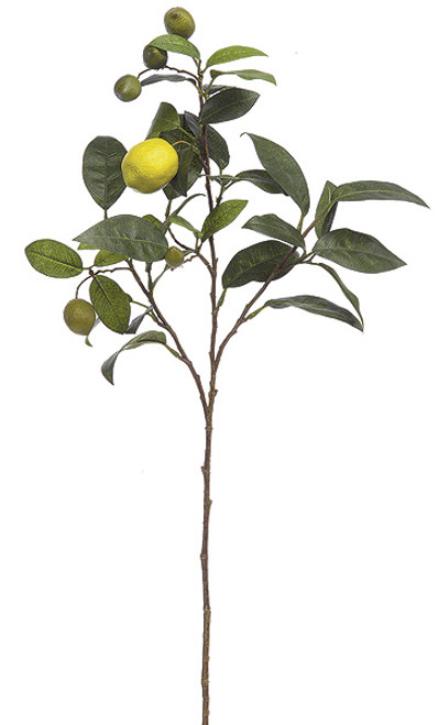 P-50200