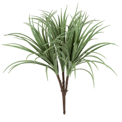 "A-18128"" Liriope PlantCream/Green"
