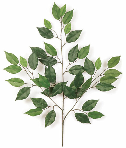 "Regular or Fire Retardant24"" Ficus Branch"