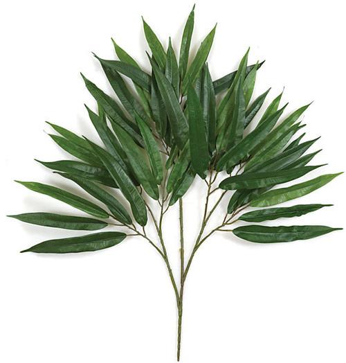 """P-711026"""" Ficus Alii Branch"""