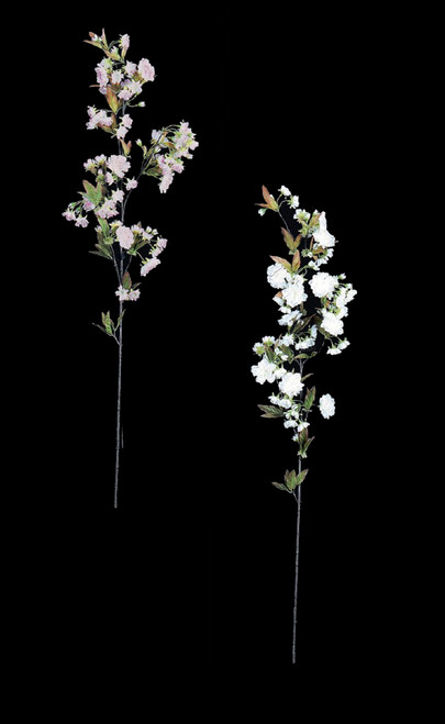 Cherry Blossom Branches - Pink or White