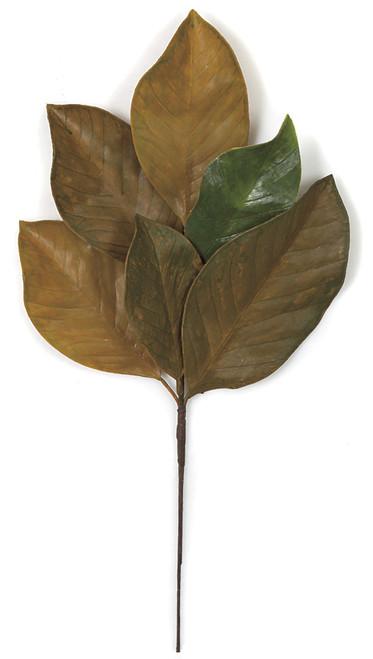 "A-16004019"" Fall Magnolia Spray"