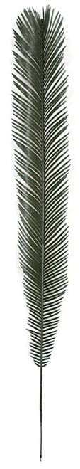 A-10805