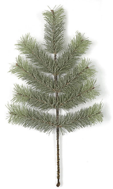 C-172170