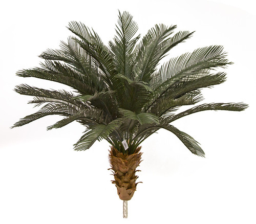 A-174530 - 3.5' Tall 3.5' Polyblend Cycas Palm Tree with Extra Pipe