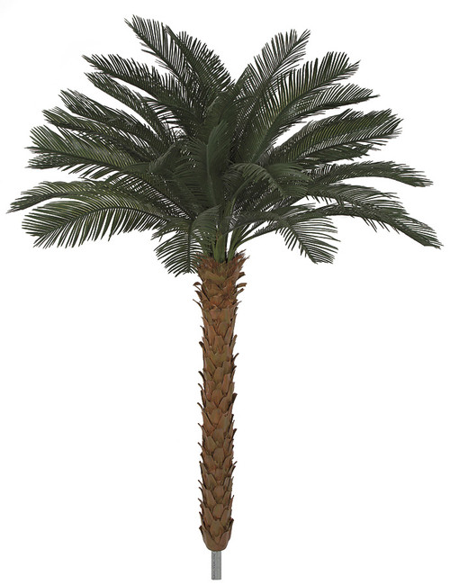 Polyblend Cycas Palm tree with Extra Pipe
