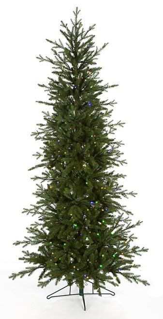 C-1710497.5' Edmonton Pine Tree