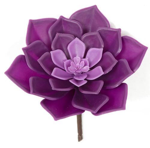 """7"""" Outdoor SucculentTutone Purple"""