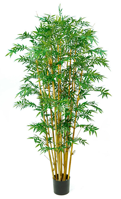 W-170200