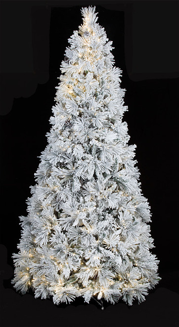 C-170314