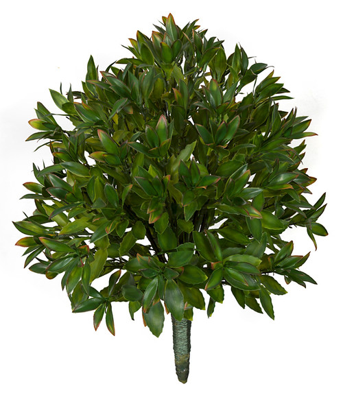 AR-175300