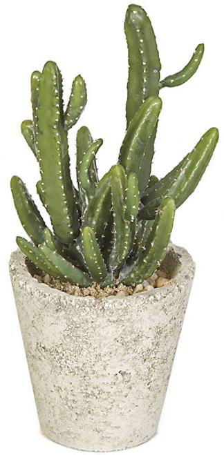 """A-11094012.5"""" Potted Mini Cactus"""