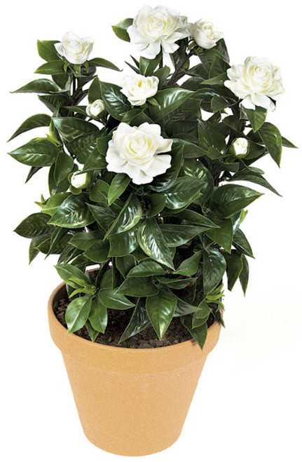 A-0690