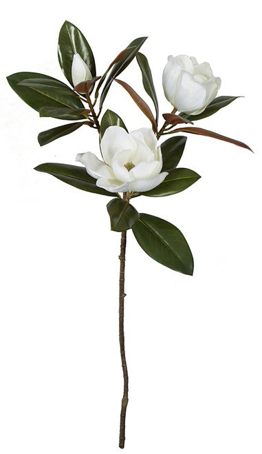 P-173720