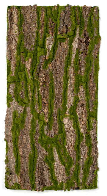 A-182130 Bark and Moss Sheet
