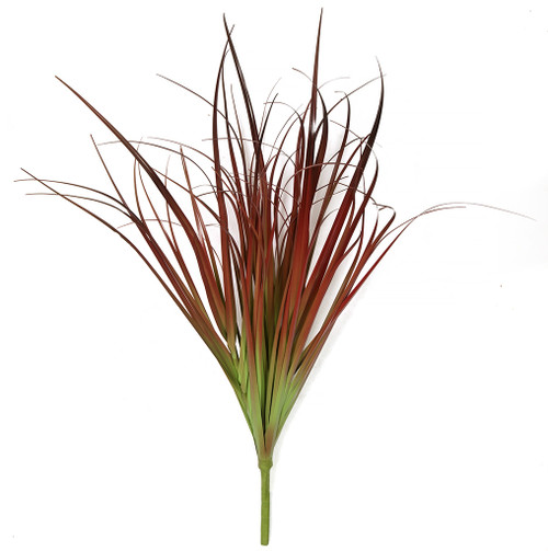 A-184670 29 Inch Red and Green Onion Grass  Bare Stem