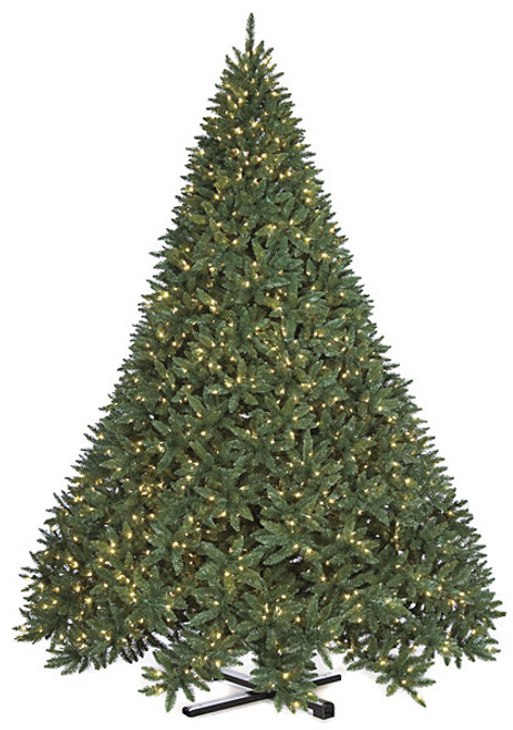 """12' Full Size Maritime Pine Tree 108"""" Wide"""