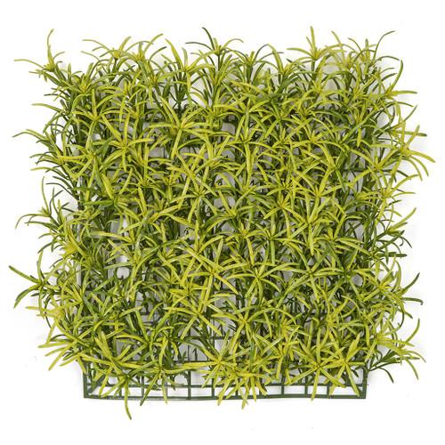 "A-160820 11.5"" Podocarpus Mat"