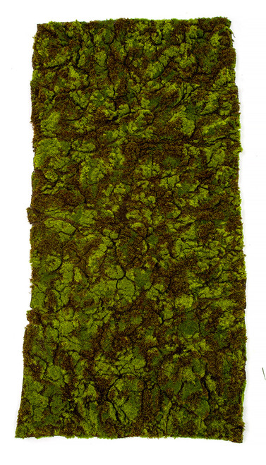 Brown flocking moss