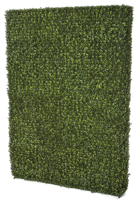 """48"""" Long x 8"""" Wide x 65"""" Height Outdoor Boxwood Hedge"""