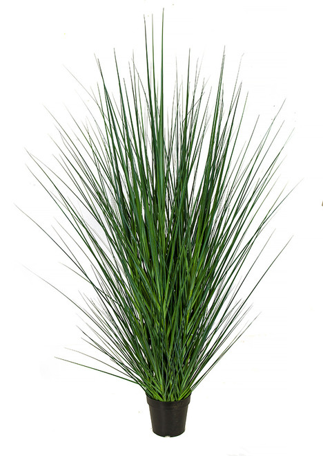 "A-184650 57"" Onion Grass Bush"