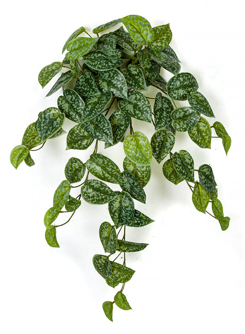"26"" Scindapsus Leaf Bush Green and Speckled Grey"