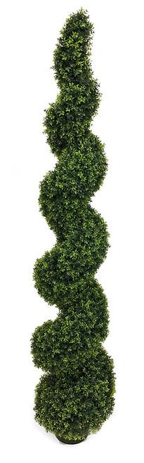 6' UV Dwarf Boxwood Spiral Topiary