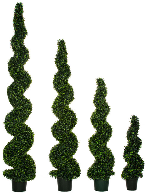 Dwarf Boxwood Spiral Topiaries 4 Foot, 6 Foot , 8 Foot, 10 Foot Limited UV Protection