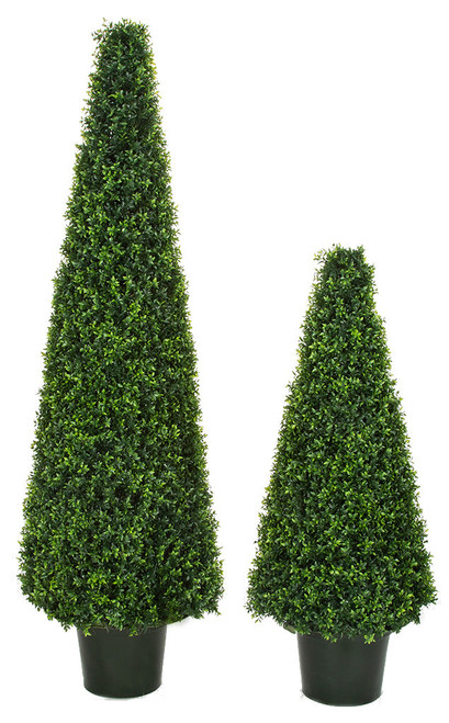 UV Dwarf Boxwood Cone Topiaries 6' and 4' Tall