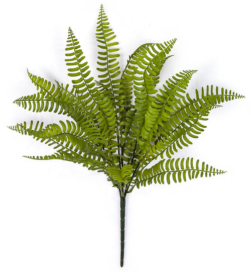 "A-181230 12"" Boston Fern Bush"