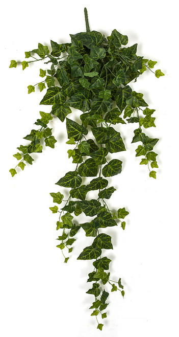 "A-181770 42"" Large Ivy Bush"
