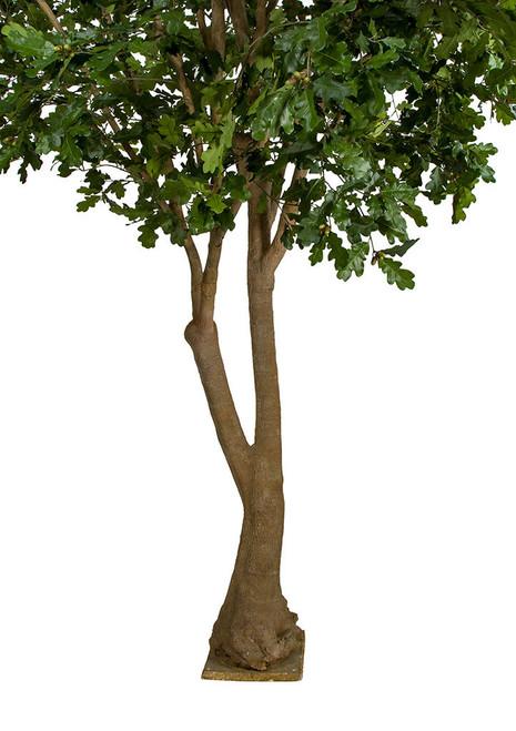 P-181750 12' Oak Tree on Multi Trunk with Flat Base