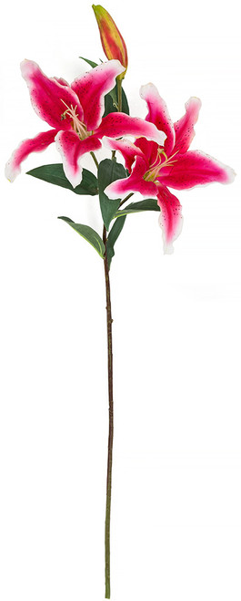 "37"" Stargazer Lily Stem Fuchsia Red Color"